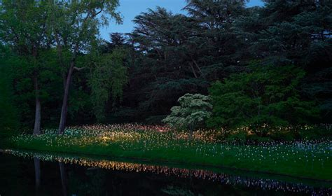 new brunce munro light exhibition at longwood gardens