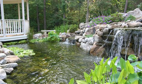 Backyard Pond Pool Pools Ponds Revolutionary Gardens
