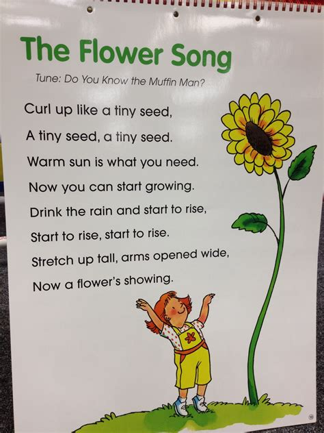 five ways want to bloom books the flower song science cycles songs