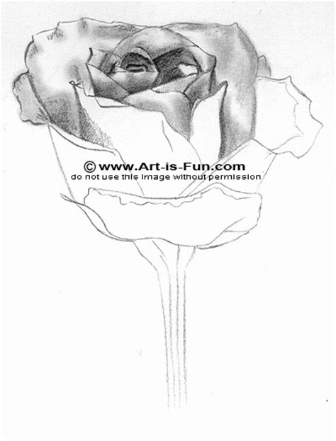 how to draw pencil drawing how to draw a learn to draw pencil drawings