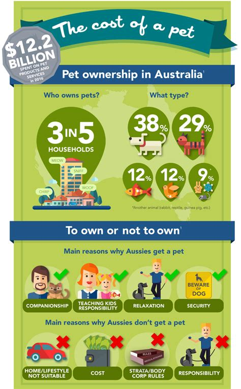 how much do dogs cost per year here s how much your pets cost per year lifehacker australia