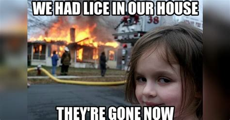 Head Memes - head lice memes because all you can do is laugh