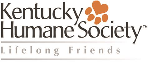 ky humane society dogs kentucky humane society petfinder