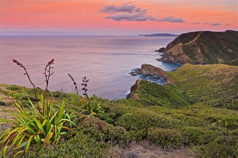 Landscape Pictures New Zealand New Zealand Landscape Photo Cape Reinga Photo Information