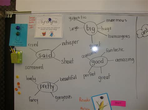 map synonym today in grade synonyms and antonyms