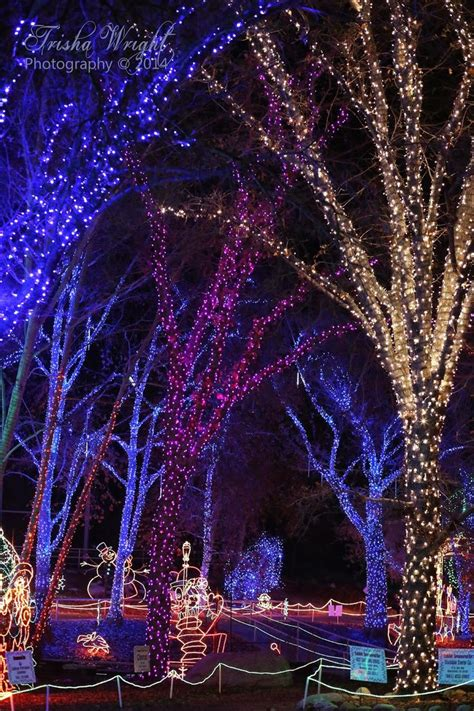 be sure to check out the zoo lights at calm zoo in