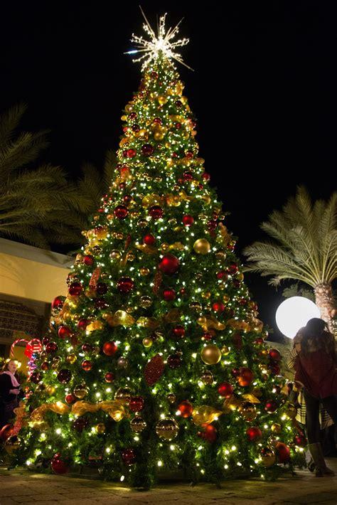mount washington christmas tree omni properties showcase their spirit