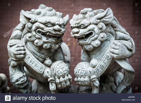 imperial lions stockfotos imperial lions bilder alamy - Chinesische Lions
