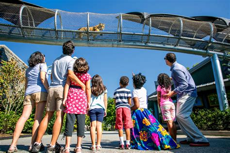 most popular things for kids top things to do with kids in philadelphia visit