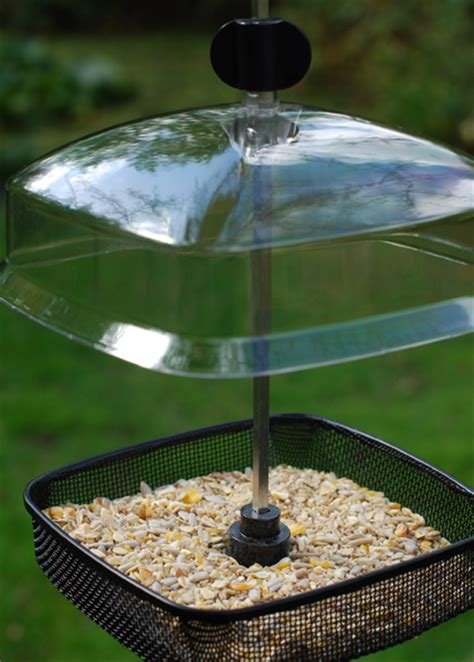buy mealworm feeder delivery by crocus
