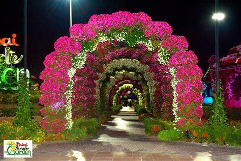 Garden Decoration Dubai by Miracle Garden Dubai World Flowers