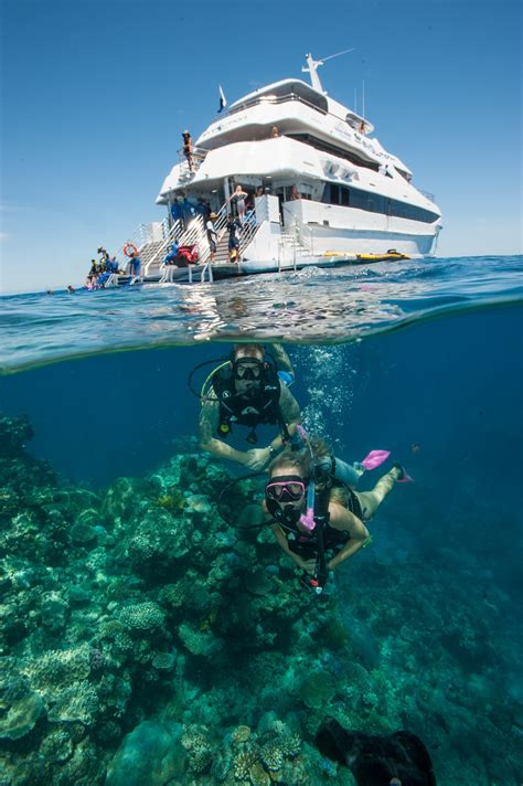 great barrier reef dive trips great barrier reef tours cairns or half day