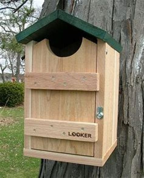 owl bird house plans easy free step by step screech owl house plans i ve already made one i will be