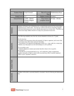integrated lesson plan template sle ubd lesson plan template