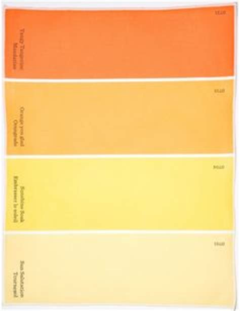 behr behr paint and color swatches on