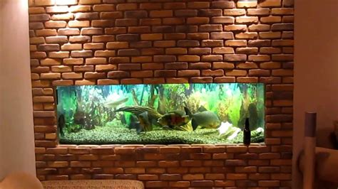 fish tank in wall amazing in wall fish tank 2017 fish my in wall fish tank phase 1 of 2 youtube