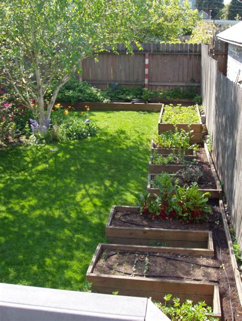 herb garden layout ideas vegetable and herb garden layout raised beds for herb