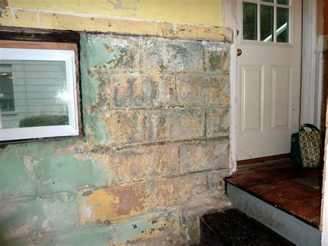 how to clean black mold in basement smart design how to remove paint from basement walls clean