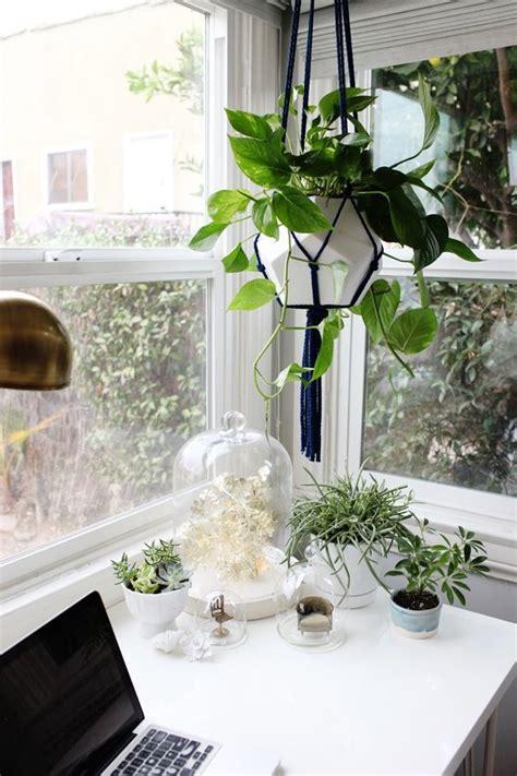 Préparer Jardin Pour L Hiver by Creer Un Doux Jardin D Int 201 Rieur Pour L Hiver