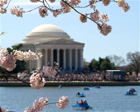 pedal boating in dc travel for kids washington dc photos