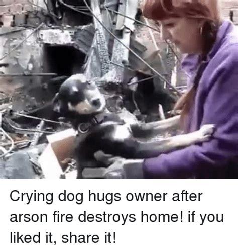 25 best memes about arson arson memes
