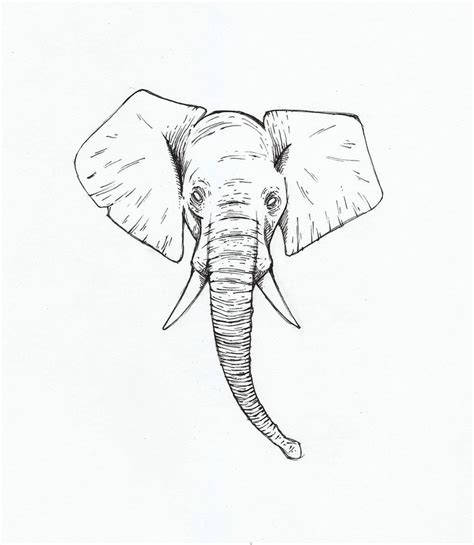 tattoos elephants design elephant tattoos designs ideas and meaning tattoos for you