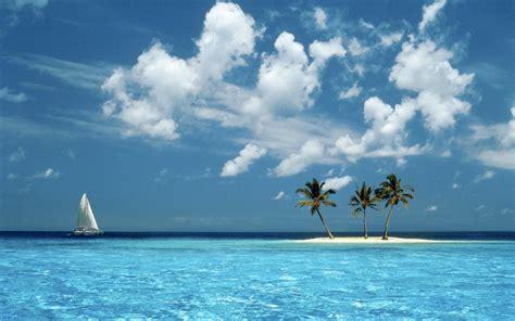 sfondi tropicali sfondissimo sfondi screensaver gratis