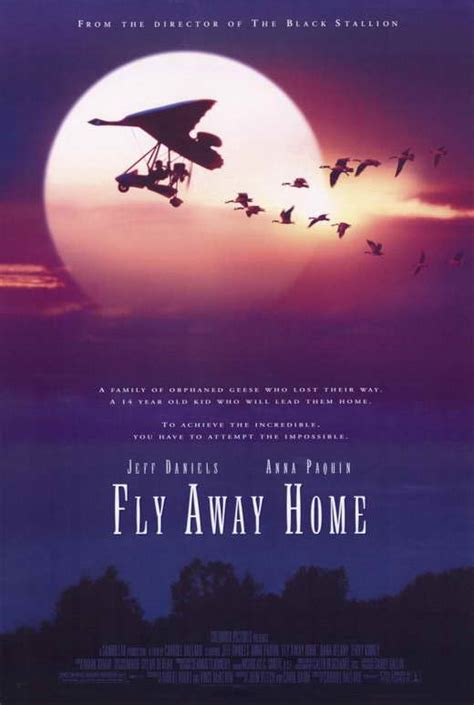fly away home posters from poster shop