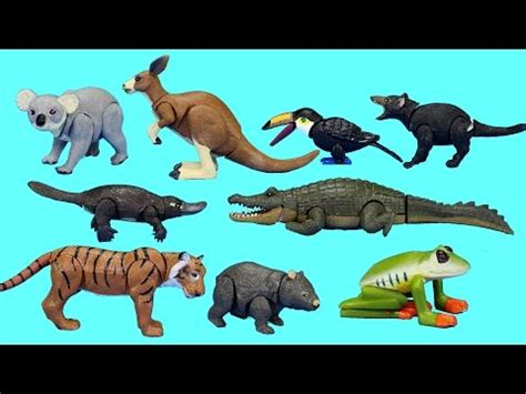 let s learn about jungle animals letã s safari animals toys for let s learn animal