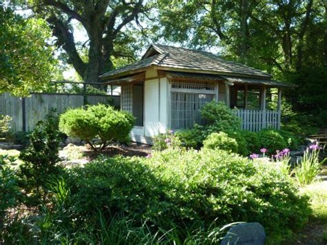 tea house picture of new hanover county arboretum