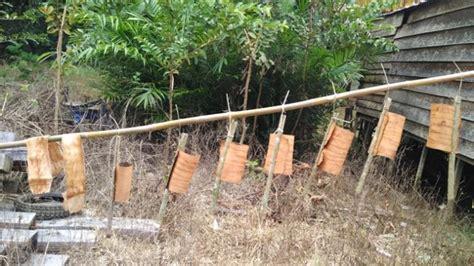 harga membuat yayasan berjumpa ragam peninggalan tradisi budaya leluhur di desa