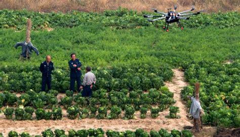Sebuah Drone Di Malaysia ini lima hambatan produktivitas sektor pertanian bisnis tempo co