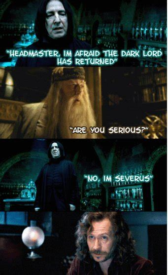Harry Potter Memes Funny - love or looks harry potter jokes