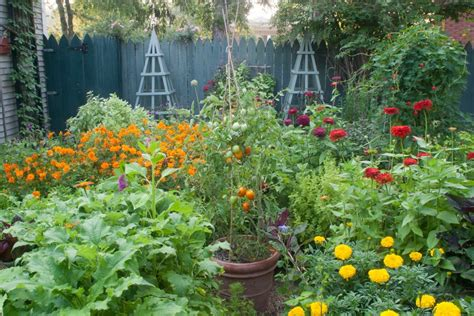 Summer Vegetable Garden by Summer Vegetable Garden Planting Plan