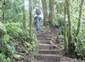 sky costa rica precios de servicios sky adicionales tours monteverde monteverde sky walk tour