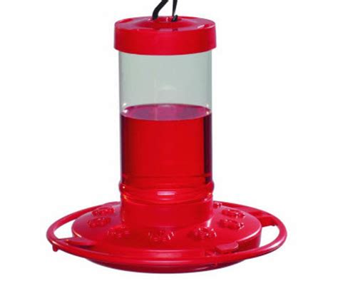 cheap hummingbird feeders hummingbirds plus