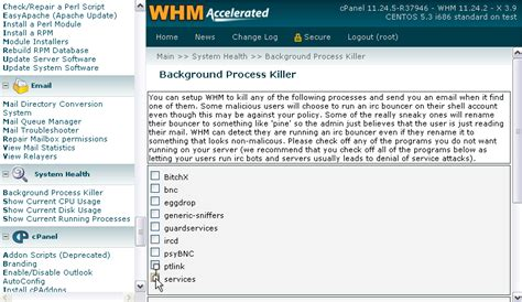How To Check Background Process In Linux How To Use The Cpanel Background Process Killer Linux