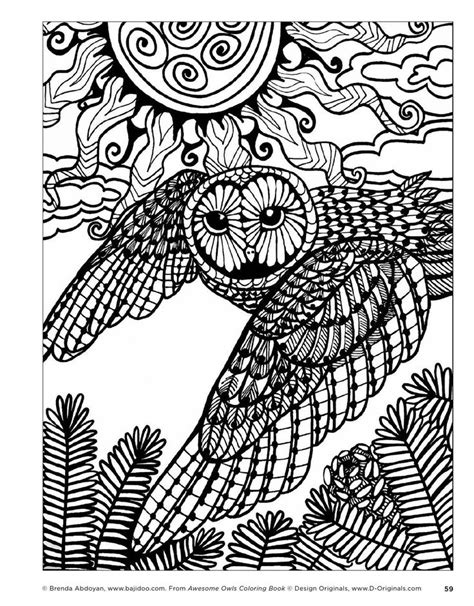coloring pages adults owl 891 best owl colouring images on pinterest coloring