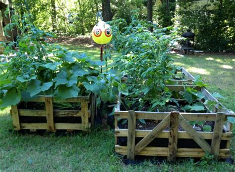 Cheap Raised Garden Bed Ideas 12 Easy Cheap Diy Raised Garden Beds Ideas
