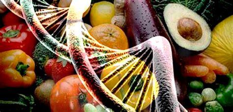 epigenetica e alimentazione alimentazione oggi tra nutraceutica ed epigenetica in