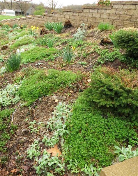 namely original spring flower beds