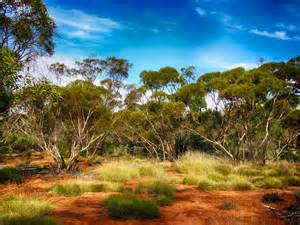 Landscape Pictures Australia Free Photo Australia Landscape Scenic Sky Free Image