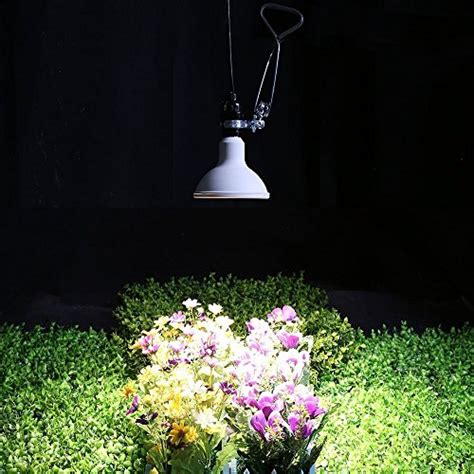 Best Quality Sandal Led Light Nyala Flower Pink ipower multi spectrum led grow light for plant growth and import it all
