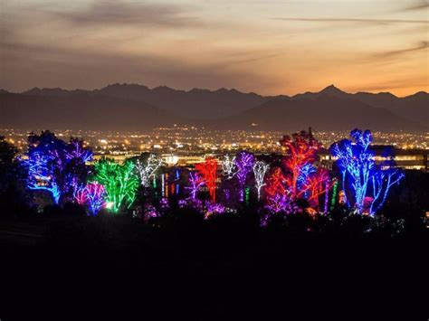 zoo lights arizona 9 best events in arizona tripstodiscover