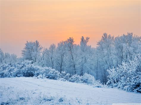 wallpaper free snow 20 hq snow backgrounds wallpapers images freecreatives