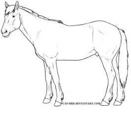 coloring pages of mustang horses mustang horse outline coloring pages