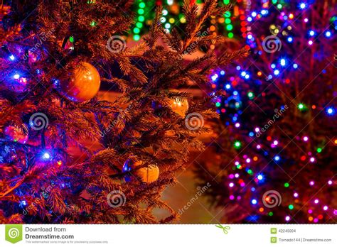 brightly illuminated xmas trees in the dark street stock