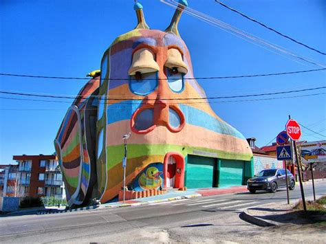 weird house designs unusual house design ideas inspired by animals
