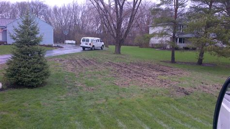 how to seed and fill in bare and thin spots in your lawn life and