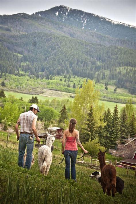 puppies bozeman mt northern rocky mountain alpacas bozeman mt is an alpaca farm located in bozeman